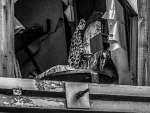 Terremoto L'Aquila_Silvia Cleri-vita interrotta